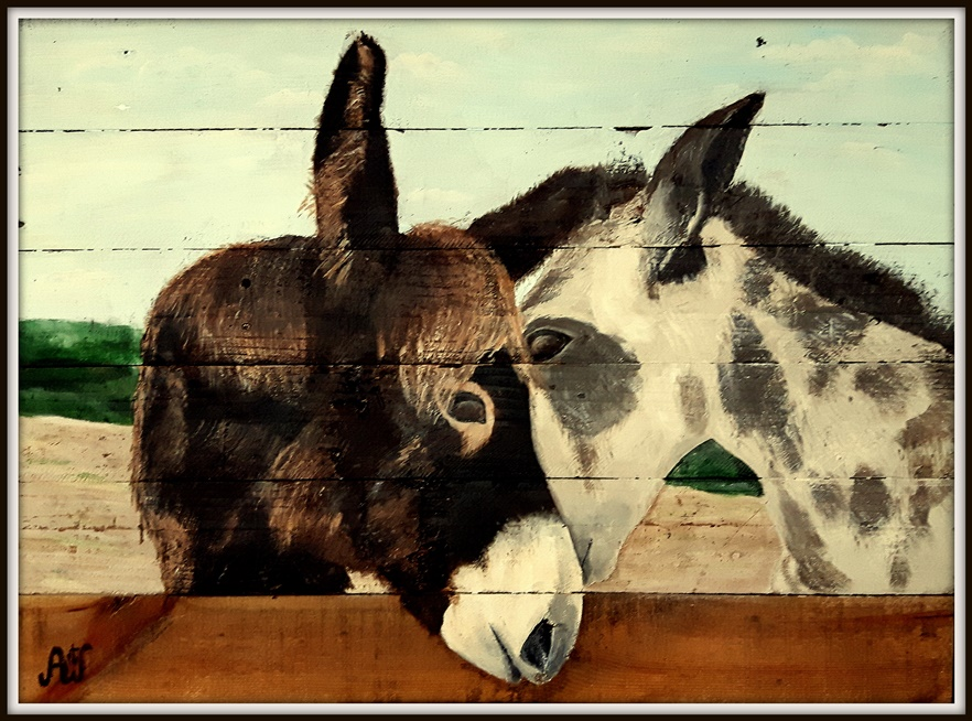 'Inseparables', donkeys on a donkeynursery